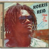 『Norris Reid「Roots & Vine」』の画像