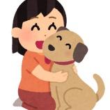 『犬飼って毎日10時間くらいスリスリしたいんやが』の画像