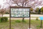 『オオルリ』についてめっちゃ詳しく掲載されてる掲示板がある!~天の川緑地公園のところ~