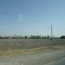 ウズベキスタン旅行記38 シャフリサブスからサマルカンドへ移動。夕食は「カリンベク(Karimbek)」で念願のシャシリクを食べる