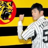 『【野球】建山に期待してる阪神ファンいる?』の画像