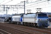 『2019/11/12運転 EF200+シキ800B2京都鉄博展示甲種』の画像