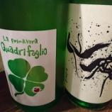 『新酒の季節ですね~🍶【梅田日本酒ニューエビス】』の画像