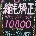 ★★★  春の縮毛矯正キャンペーン  ★★★
