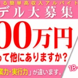 『一回で300万円稼げるお仕事って他にありますか?』の画像