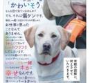 【朗報】人間さん、犬の気持ちを完璧に理解してしまう