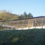 春夏秋冬  養鶏と農業ブログ