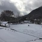 『雪ですね。』の画像