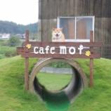 『\愛犬家の理想を実現!ワンちゃんも人も楽しめる場に/1ヶ月で登録328匹!ドッグラン併設カフェ「カフェモフ」(岐阜県関市武芸川)の人気の秘密とは?』の画像