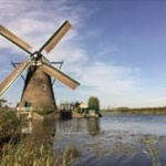 【デマ】オランダ「5Gでムクドリ死亡」→フェイクニュース でしたwww