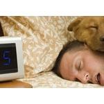 どうしても寝坊する癖が治らんのやが、どうすればええんや?