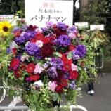 『【乃木坂46】バナナマン、今年は『赤ピンクに紫』だったんだな・・・』の画像