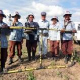 『2011.11.18 地雷処理から3ヶ月』の画像