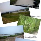 『自転車通勤実践編』の画像