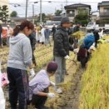 『【福岡】福岡女学院大学学生のみなさんと稲刈り交流 』の画像