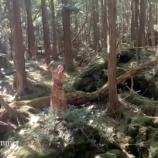 『【動画あり】とんでもないところで撮影してるな・・・中田花奈が森の中で『裸足でSummer』踊る映像がカオスすぎる・・・【乃木坂46】』の画像