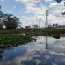 9月の長峰公園の池も水面の映り込みの景色がとても美しかった!!