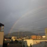 『虹×虹』の画像