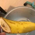 『2020/07/24 生体腎移植入院 手術後4日目  バナナが嬉しい!』の画像