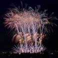 2年連続中止に!夏の新潟市一大イベント中止決定!『新潟まつり』が新型コロナウイルス感染拡大防止のため開催中止が決定したらしい。