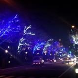 『上戸田イルミネーション、本日全区間の試験点灯が行われました』の画像