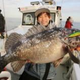 『4月12日 釣果 スーパーライトジギング 魚種多い一日でした。珍しい魚も混じりましたよ♬』の画像