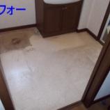 『洗面所の床材はりかえ (プチリフォーム)』の画像
