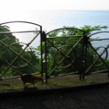 『江ノ島 その2』の画像