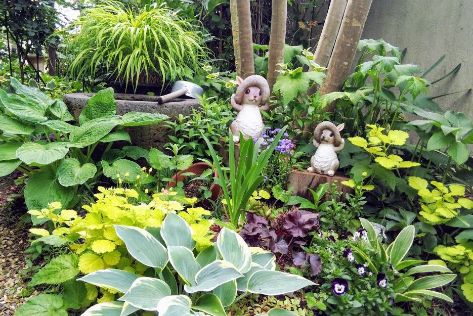 雑木の庭 時々バラ イメージ画像