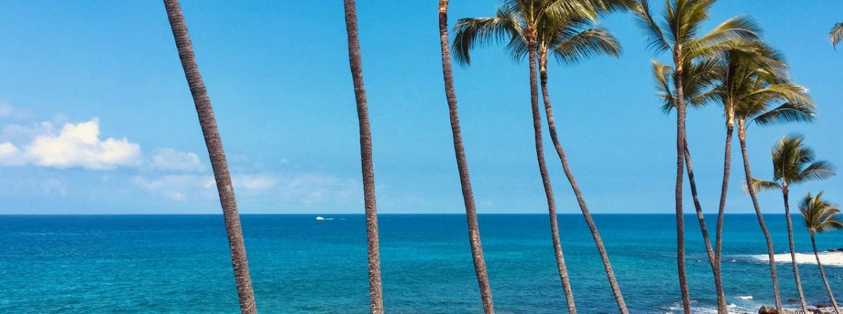 ハワイ島の不動産 - コナ ドリーム ホーム イメージ画像