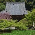 釜の口山 長岳寺