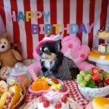 『🎂てぃいだ、5歳の誕生日おめでとう🎂』の画像