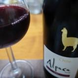 『アルパカの赤ワイン~「サンタ・ヘレナ・アルパカ・シラー」とドライカレー』の画像
