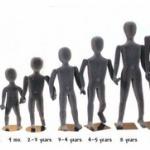 人間は同じくらいの身長の異性に惹かれることが判明