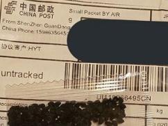 【テロ速報】 中国から日本の家庭に勝手に送りつけられてる謎の種の正体が判明!!!! これ植えると日本中がとんでもない事になるぞ…