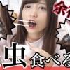 【動画】お嫁に行けない理由が発覚しました。〜私、昆虫タガメを食べます。〜