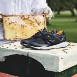 """『3/21 発売予定 Sneakersnstuff x Reebok Ventilator """"Bees & Honey""""』の画像"""