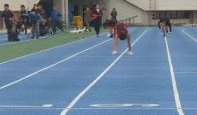 【競技】    日本で 「猿走り100メートル走」 の世界記録が樹立される。  海外の反応