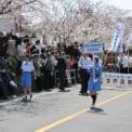 第54回鎌倉まつり2012 その3(鎌倉世界遺産登録推進協議会)