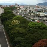 『谷山緑地公園』の画像