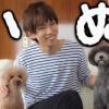 【動画】【検証】ペットは部屋に誰もいない時何をしているのか?