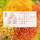 8月のカレンダーをお知らせいたします