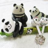 『漢方と薬膳には…やっぱりパンダ!!』の画像