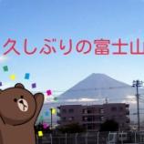 『【富士山ラン21キロ】富士登山競走&富士ヒルクライム開催祈願♪ ミニチュア富士山「富士塚」を登頂してきたwww』の画像