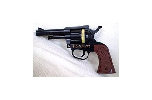 【急募】全米ライフル協会の論理攻撃を論破できる人!?!?!?!?のサムネイル画像
