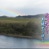 『まぼろしの虹』の画像