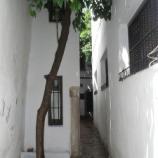 『行った気になる世界遺産 コルドバ歴史地区 ハンカチ通り』の画像
