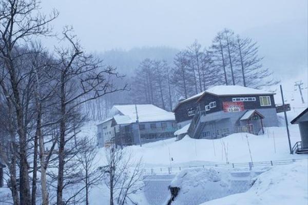 たか オグナ 場 ほ 天気 スキー