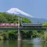 東海道本線を走るEF66 Numazu