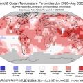 地球はどこまで暑くなるのか?今夏、浜松で41.1℃を記録!デスバレーでは約90年ぶり54.4℃